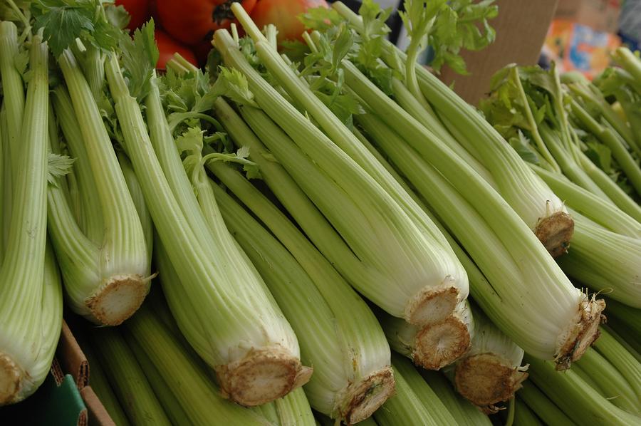 Scientific Study: Celery is a Cum Eaters Friend! « Cum